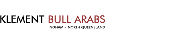 non guided paid for hunting properties in qld